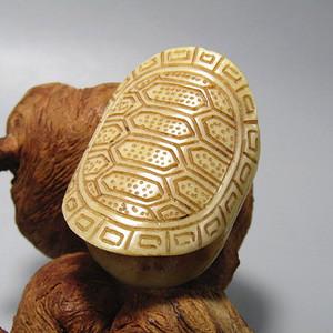 清 骨质 龟背 腰带扣 已玉化50x36x23mm