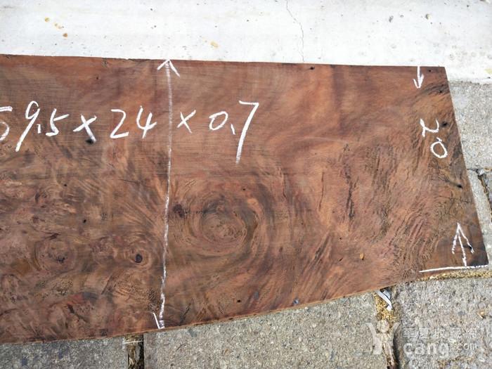 樱木板图9