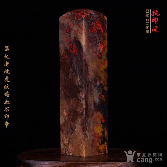 昌化老坑hu纹鸡血石印图4