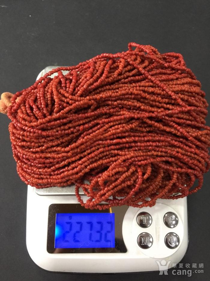 8133欧洲回流随形多股珊瑚项链图8
