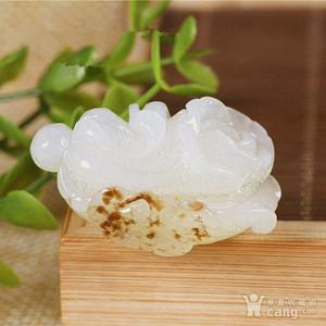 和田一级脂白籽玉白菜