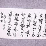 中国书法家协会理事 周志高
