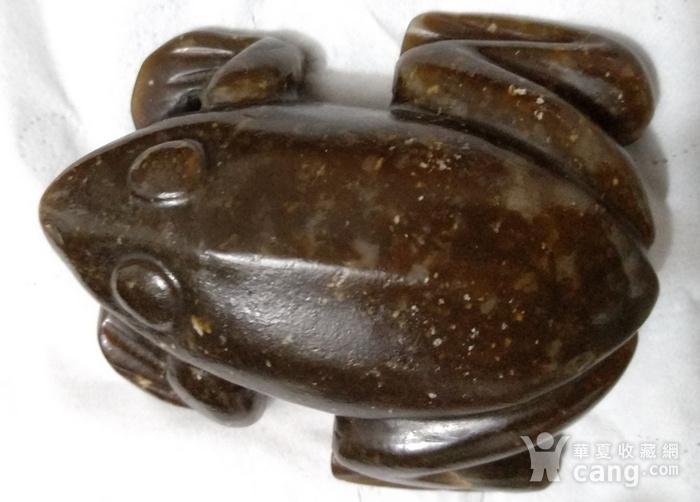 英国回流的老和田糖玉大蛙镇图1