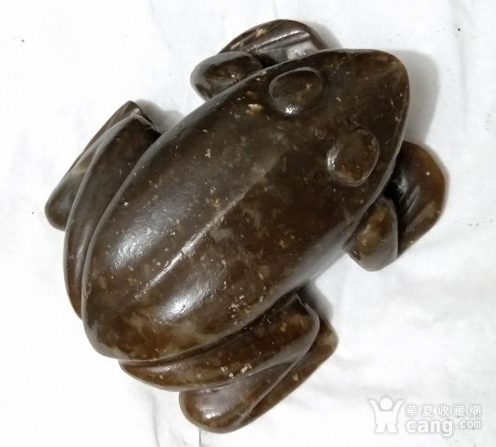 英国回流的老和田糖玉大蛙镇图12