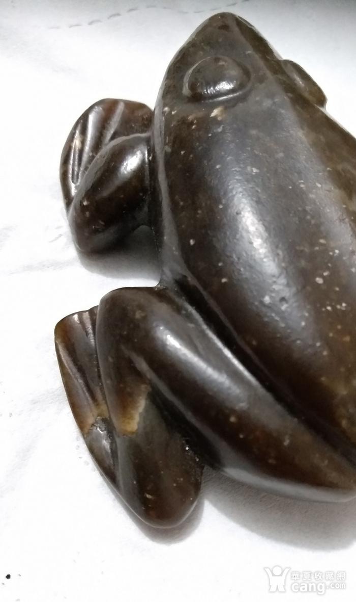英国回流的老和田糖玉大蛙镇图4