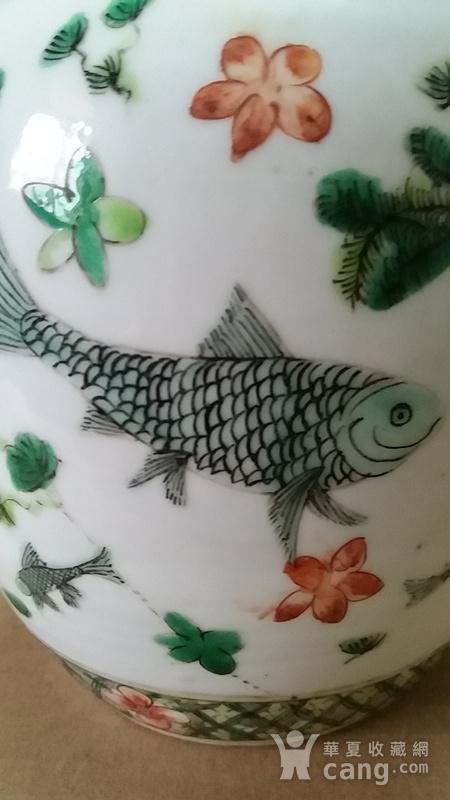 五彩鱼纹罐图5