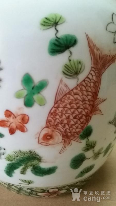 五彩鱼纹罐图8