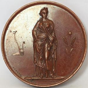 法国大铜章 1842 1845时期农业奖章