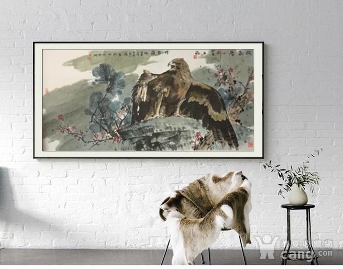 著名花鸟画家 马鸿达 四尺整张苍鹰图2