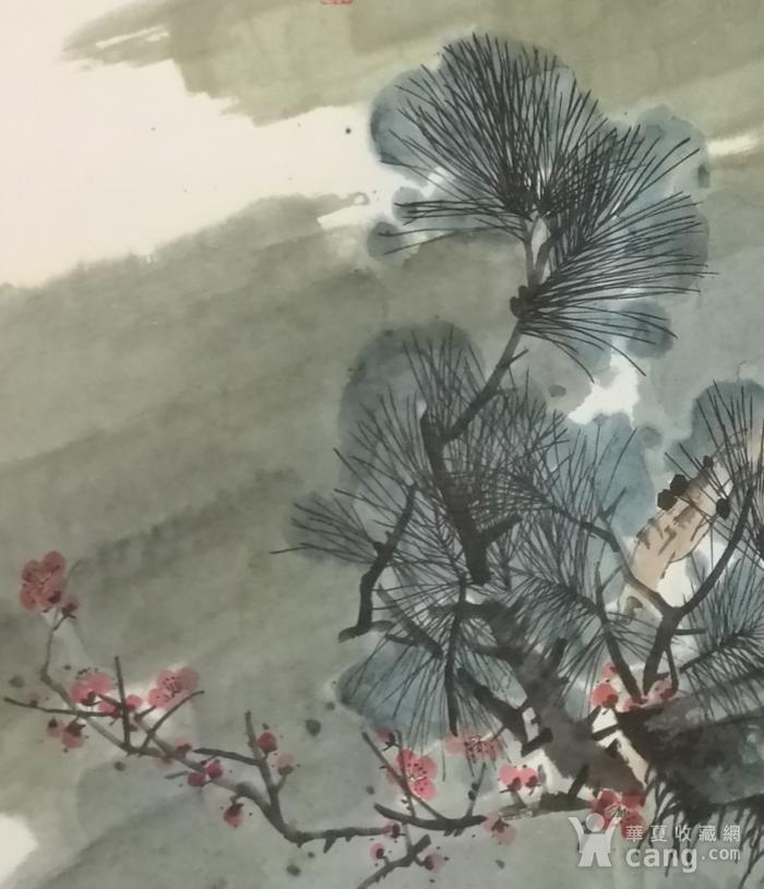 著名花鸟画家 马鸿达 四尺整张苍鹰图4