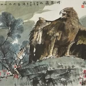 著名花鸟画家 马鸿达 四尺整张苍鹰