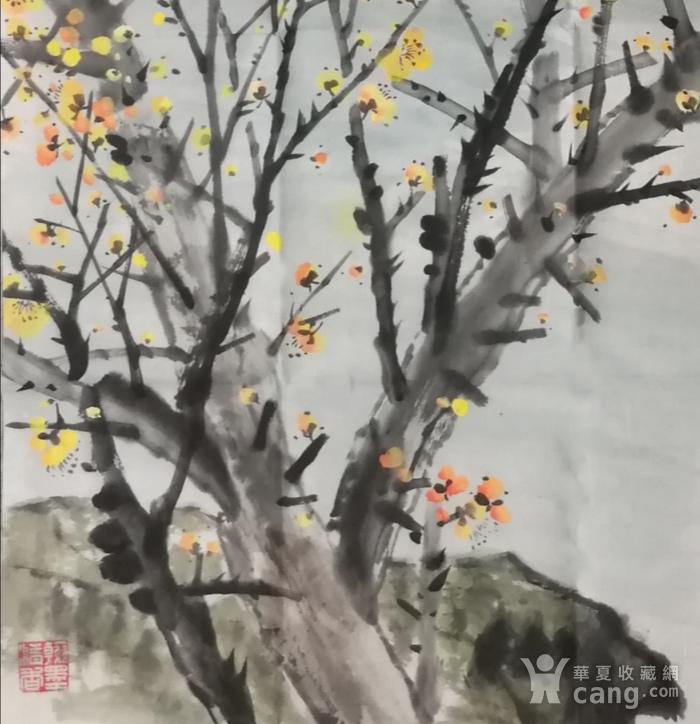 著名花鸟画家 马鸿达 四尺整张松鹤延年腊月寒梅图2