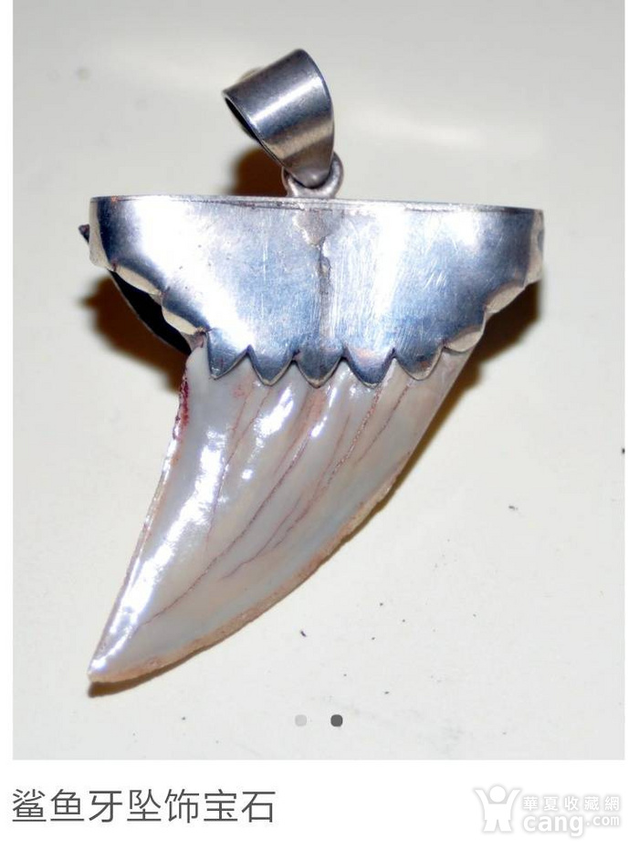 回流之鲨鱼宝石坠图2