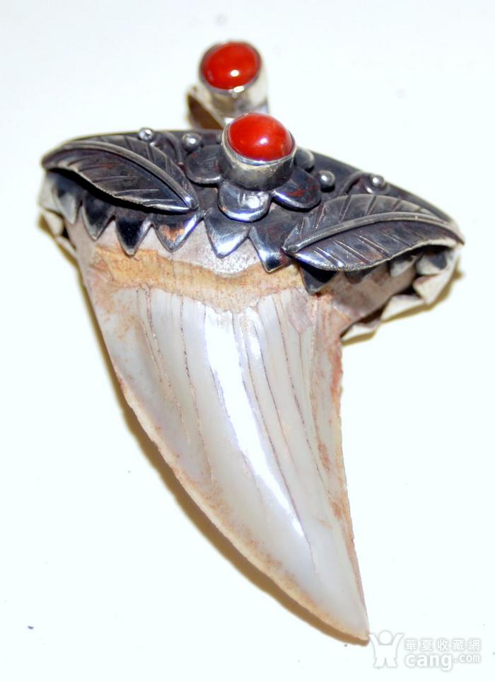 回流之鲨鱼宝石坠图1