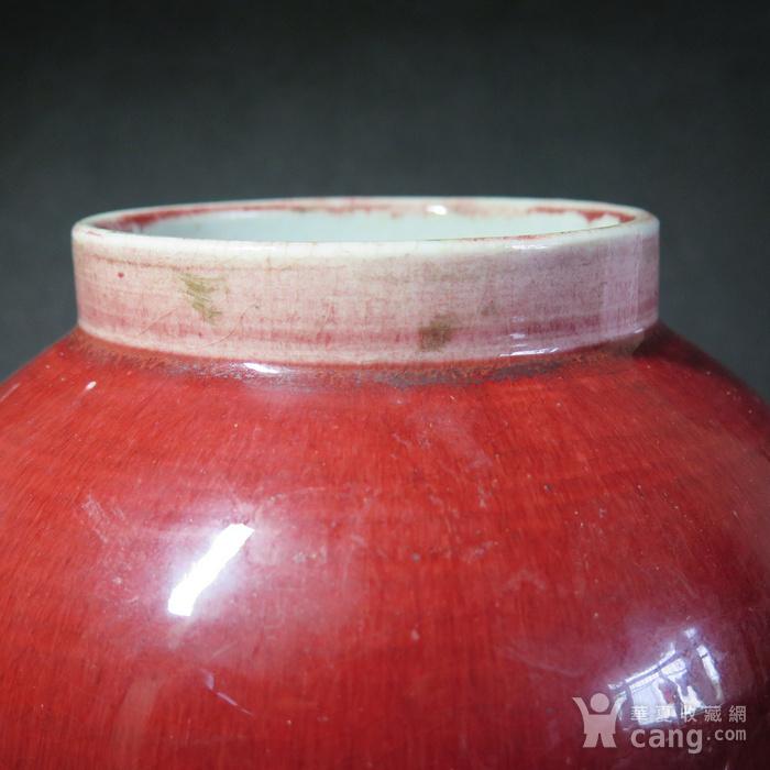 清代红釉将军罐图5