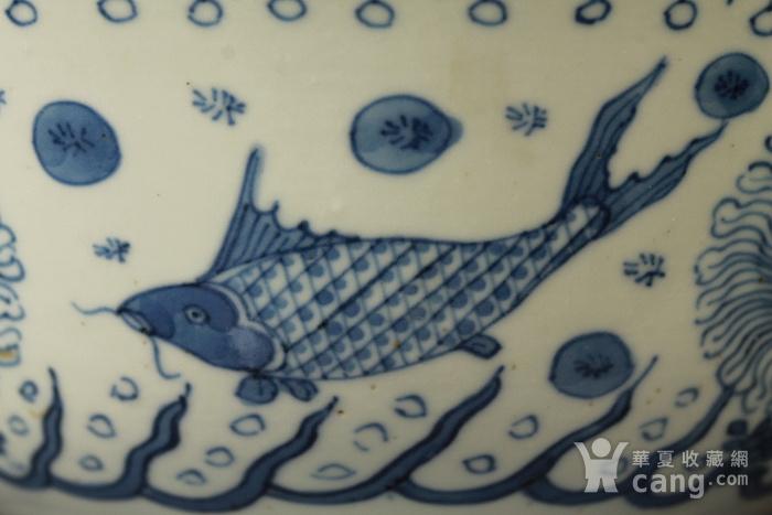 清康熙青花鱼藻纹葵口碗图6