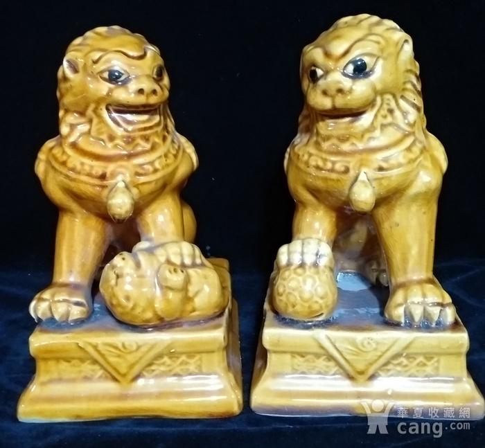 回流之黄狮子一对图1