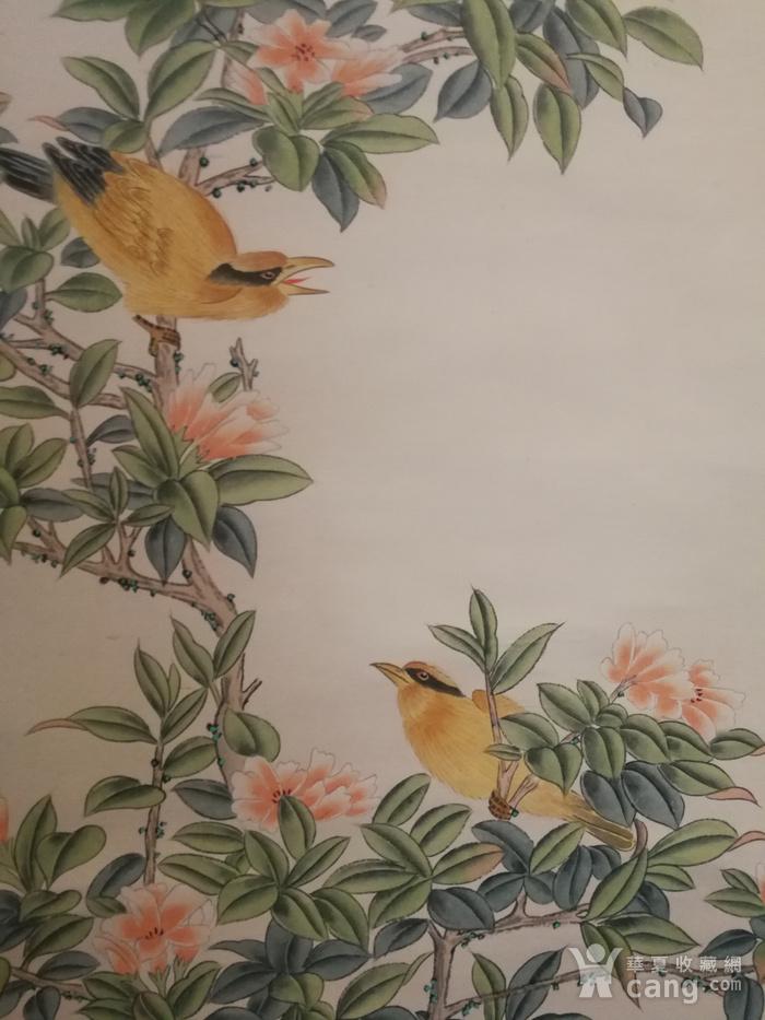 装裱画沈铨花鸟图8