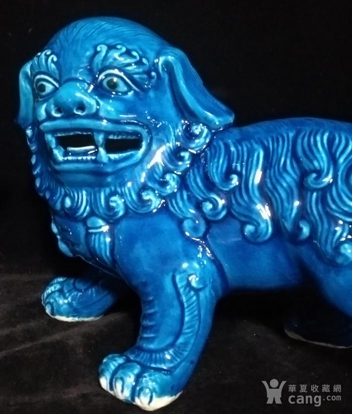 回流之孔雀蓝大摆狮子一对之壹图4