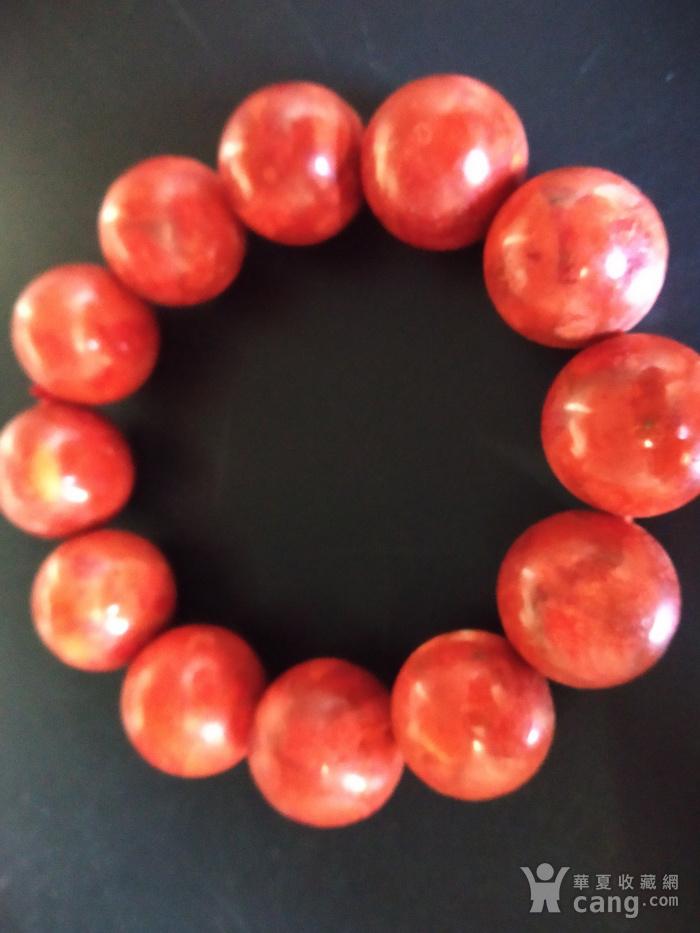 老珊瑚红珠手串图5