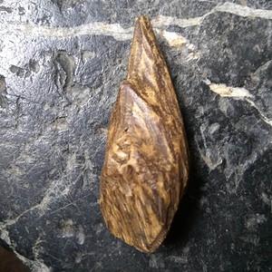 珍贵 越南芽庄虎斑黑油香