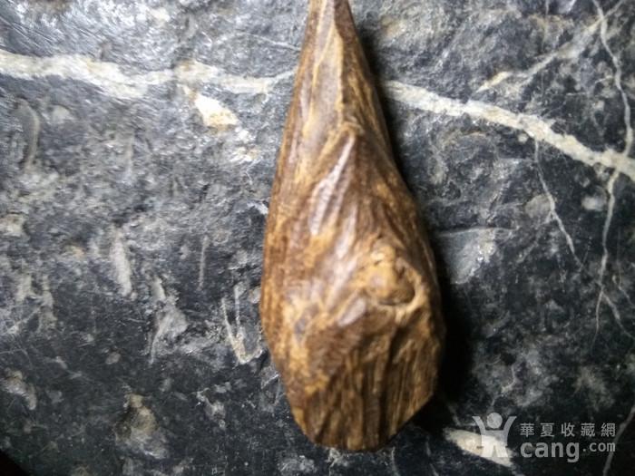 珍贵 越南芽庄虎斑黑油香图5