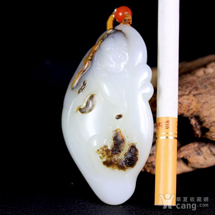 天然正品 苏工油皮巧雕 新疆和田玉黑皮籽料白玉把件 鲤鱼闹莲图5