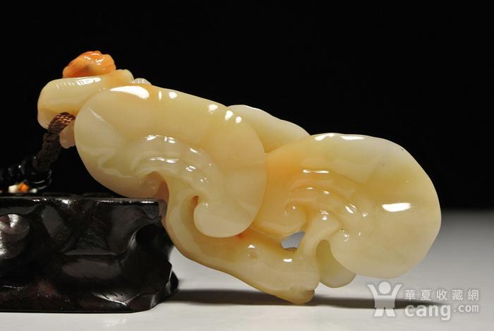 寿山老性芙蓉石 灵芝螭龙 玩件图1