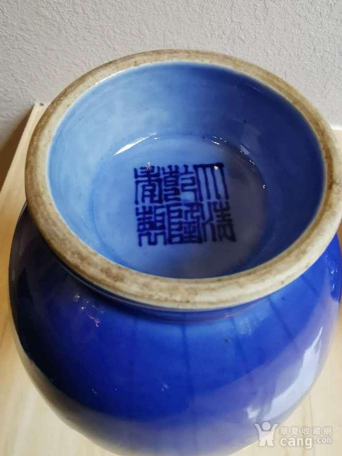 蓝釉盘枝龙菊瓣瓶一对 大清乾隆款图5