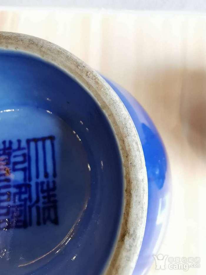 蓝釉盘枝龙菊瓣瓶一对 大清乾隆款图7