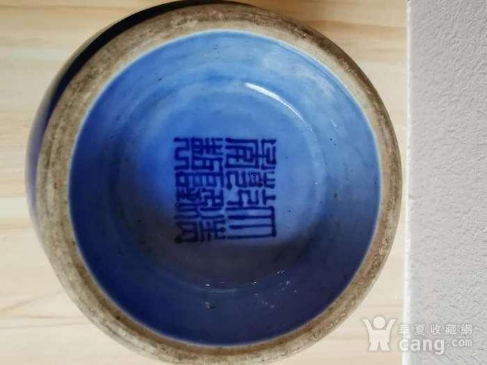 蓝釉盘枝龙菊瓣瓶一对 大清乾隆款图8
