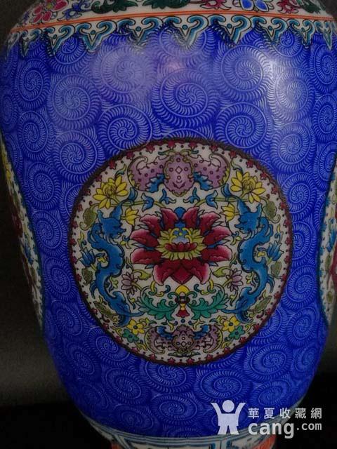 珐琅彩花卉纹瓶图5
