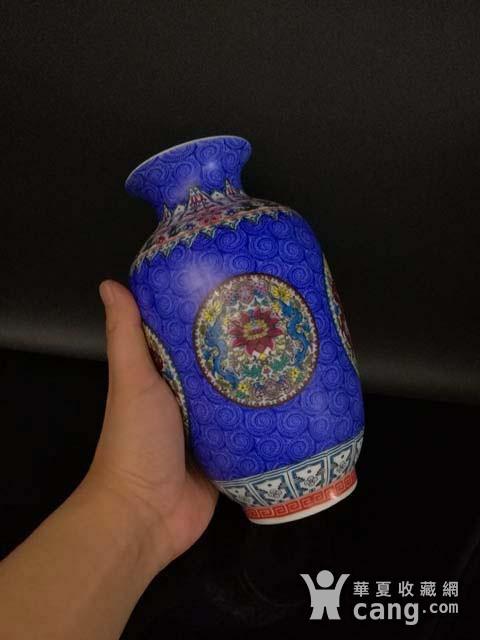 珐琅彩花卉纹瓶图8
