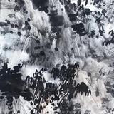 中国美术学院名家 陈武  月明看岭树
