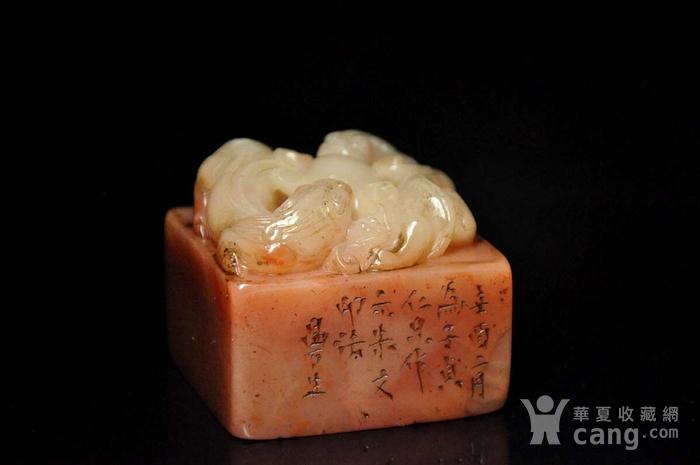 清双龙戏珠芙蓉石印章图5