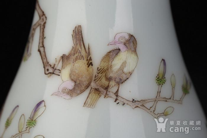 清代雍正粉彩玉兰牡丹花鸟瓶图6