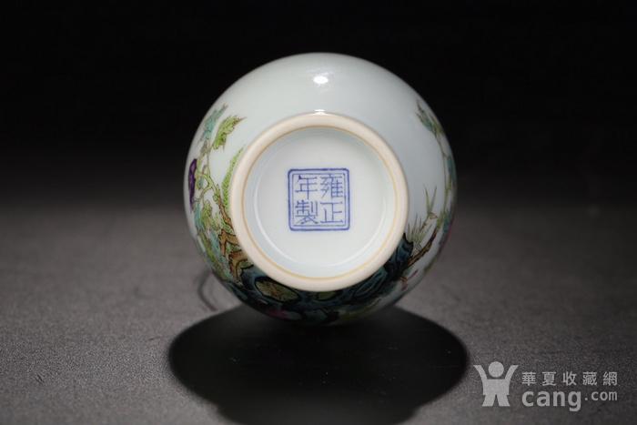 清代雍正粉彩玉兰牡丹花鸟瓶图3