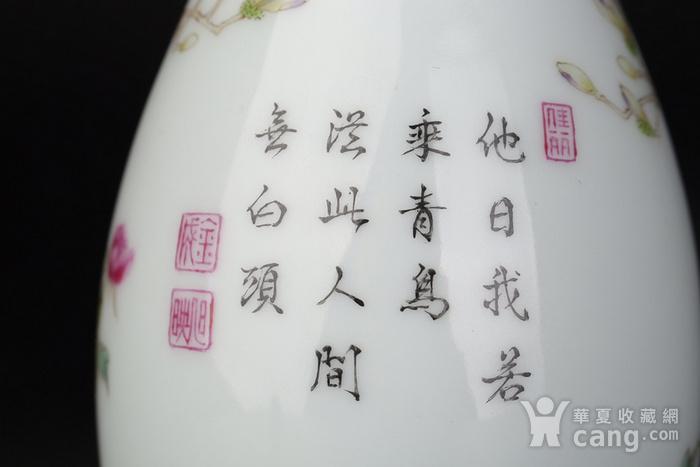 清代雍正粉彩玉兰牡丹花鸟瓶图7