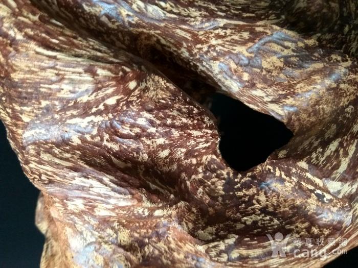 圣品 越南芽庄虎斑黑油沉香随形老料图4