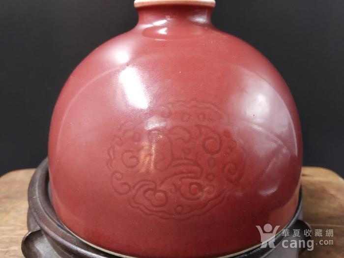 收藏级 团龙纹豇豆红太白尊图2