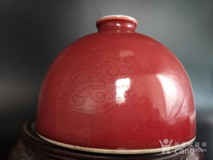 收藏级 团龙纹豇豆红太白尊图9