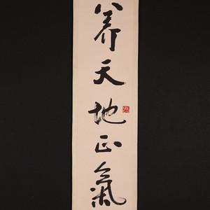 胡弘,书法