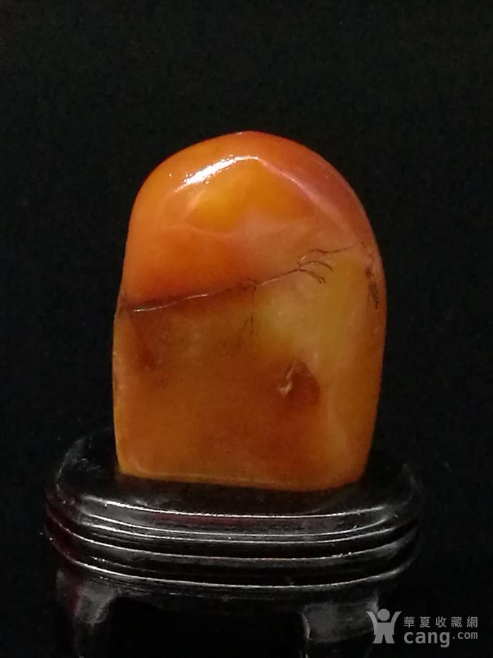 寿山石田黄石薄意浮雕摆件63 石质温润 萝卜纹隐隐可见图6
