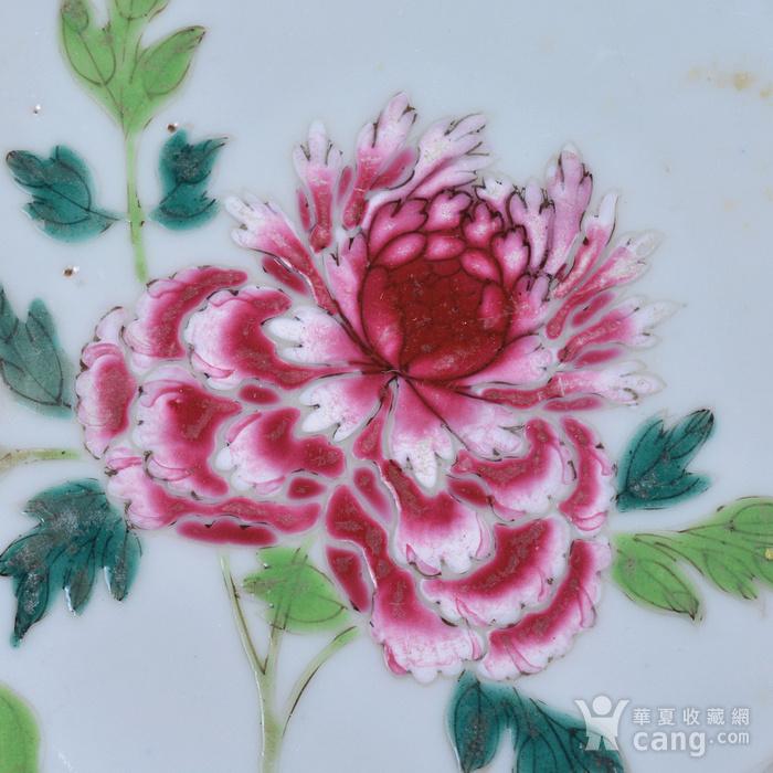 乾隆 花开富贵 粉彩盘图4