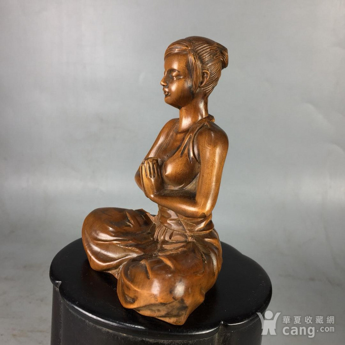 黄杨木美女图5