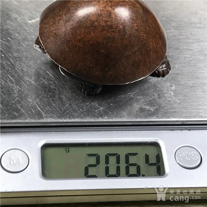 日本回流 铜器 乌龟图8